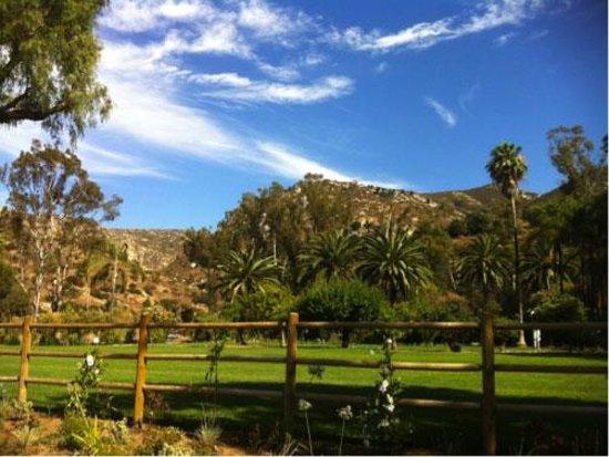 The Ranch at Bandy Canyon: Lawn
