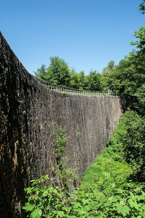 Rideau Canal - Jones Falls Defensible Lockmasters House: The arched masonry dam above Jones Falls, June 2014