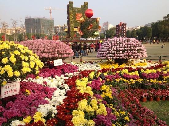Sun Wen Memorial Park: Flower exhibition in the park.