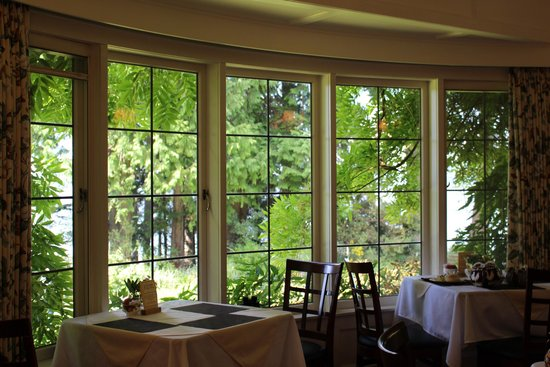 Milner Gardens & Woodland : View from one of the tea room