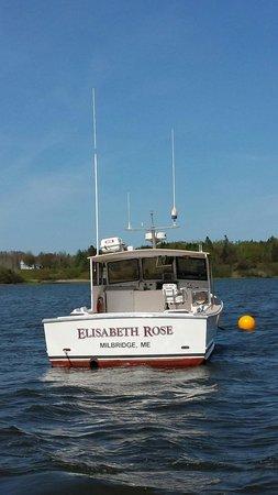 Robertson Sea Tours & Adventures: Our second vessel, Captain Jim Parker, the Elisabeth Rose.