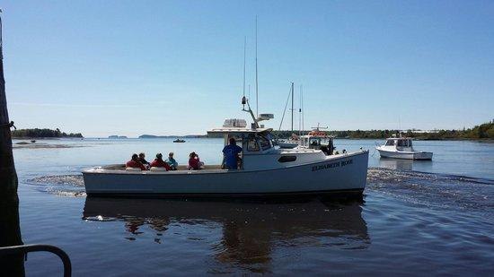 Robertson Sea Tours & Adventures: Happy passengers