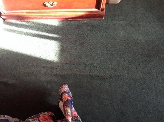 Super 8 Provo Byu Orem : buckling carpet