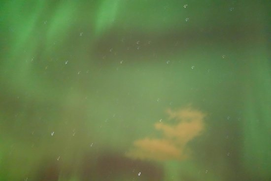 Iceland Aurora Photo Tours - Day Tours : Happiness...