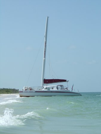 Sweet Liberty Catamaran Sailing & Boat Tours: From the water!