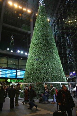 weihnachtsbaum im hbf 2 foto di berlin hauptbahnhof. Black Bedroom Furniture Sets. Home Design Ideas