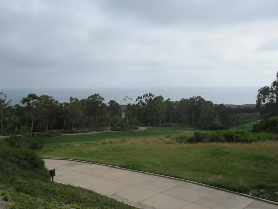 The Resort at Pelican Hill: Ocean Front View