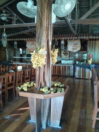 Ecoamaziona Lodge: Bananas for the guests