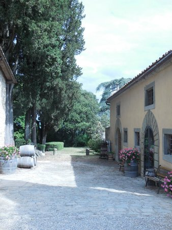 Tuscan Wine Tours with Angie : First winery we visited