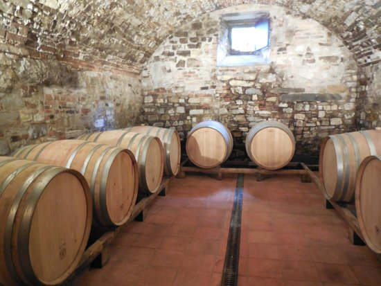 Tuscan Wine Tours with Angie : Barrels of wine