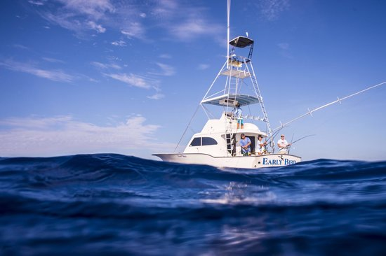 Early Bird Fishing Charters