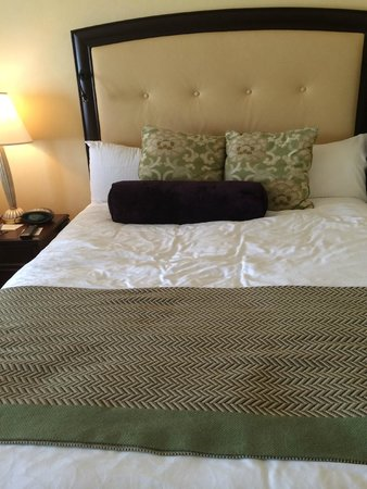 Omni Shoreham Hotel: Large Queen Size Comfortable Beds