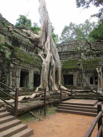 Tara Angkor Hotel: Temple