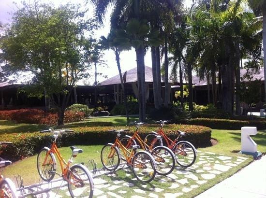 The Reserve at Paradisus Punta Cana : complementary bicycles at paradisus punta cana