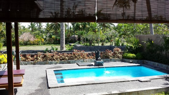 Bali Breeze Bungalows: Pool and view