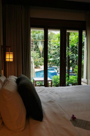The Tubkaak Krabi Boutique Resort : Pool view