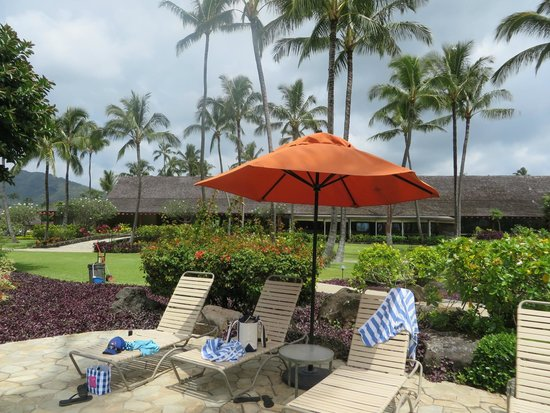 Hawaii 2018 with Photos Top 20 Places to Stay   Airbnb