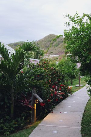 Cocobay Resort: Path to cottages