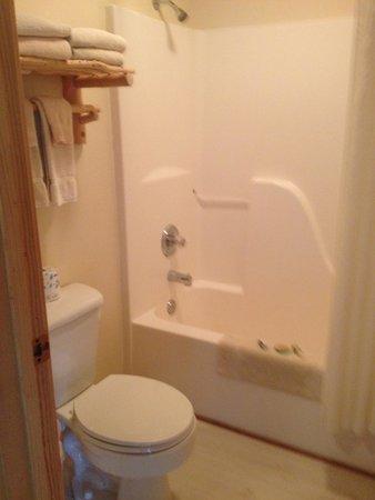 Seward Windsong Lodge: standard bathroom