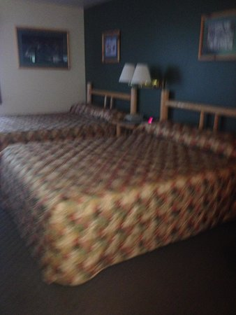 Seward Windsong Lodge: standard room