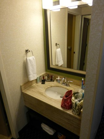 Ann Arbor Marriott Ypsilanti at Eagle Crest: Sink Area