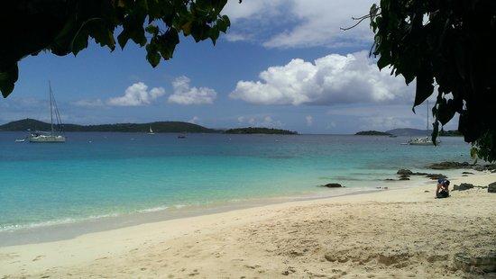 Caneel Bay Kayak, Hike & Snorkel Adventure - Virgin Islands Ecotours : Ba