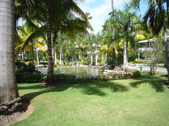 Paradisus Punta Cana: the grounds are beautiful