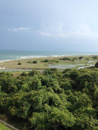 Ocean Creek Resort: partial view from deck