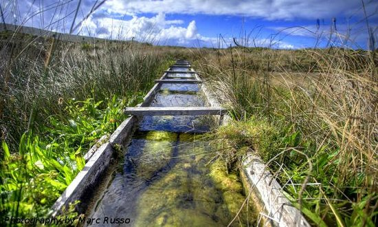Hamelin Bay Holiday Park: Old Water Wheel Augusta - Marc Russo Photography