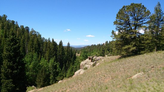Mueller State Park: Mount range