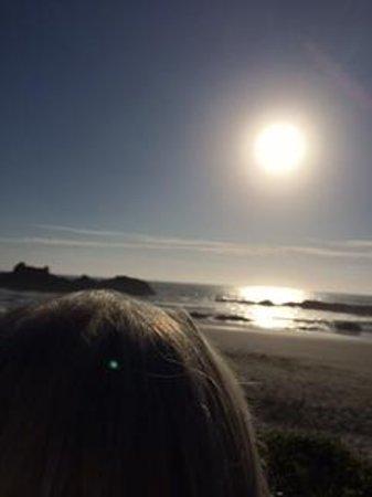 Seal Rocks RV Cove: Just gazing