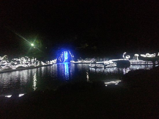 Ibusuki Iwasaki Hotel: Nightscape at pool