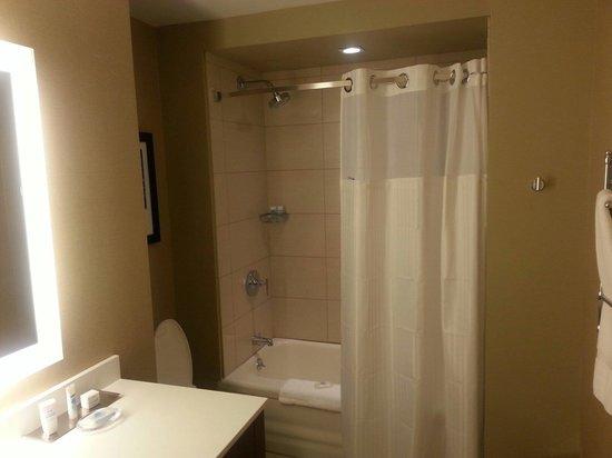 Wyndham Grand Chicago Riverfront: Shower