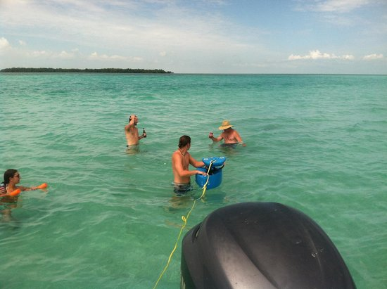 Easy Day Charters: Messing around on the sandbar!