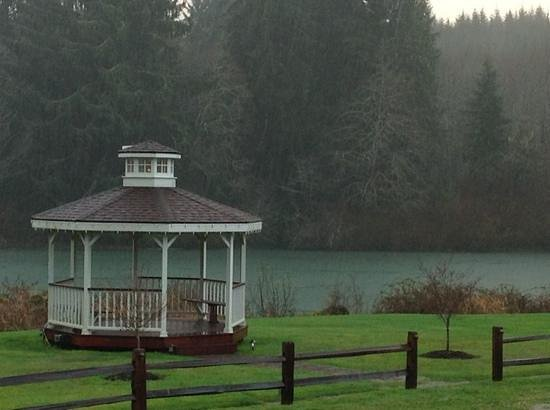 Quinault River Inn: view from my room