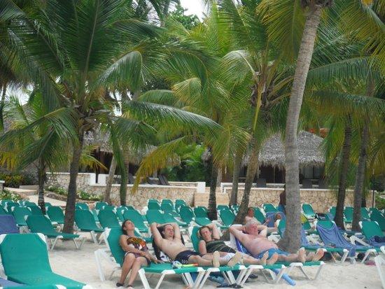 Viva Wyndham Dominicus Beach: habitaciones limpias