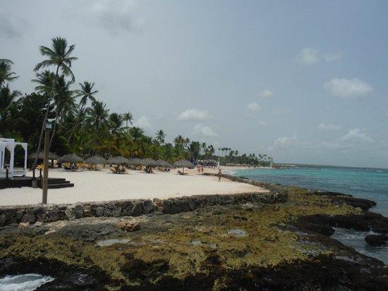 Viva Wyndham Dominicus Beach: buena arena ...poca playa