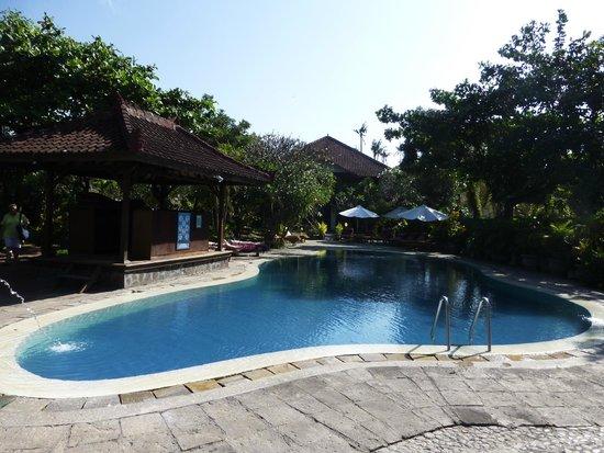 Gazebo Beach Hotel: Pool