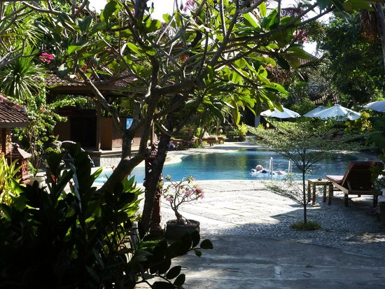 Gazebo Beach Hotel: Pool showing some of the many trees - provide lovely shade