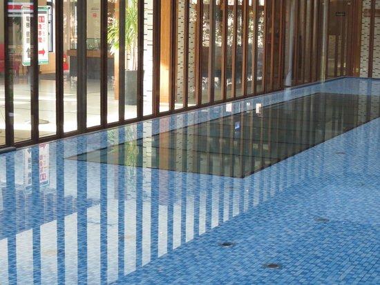 Asia Pacific Hotel: 水池