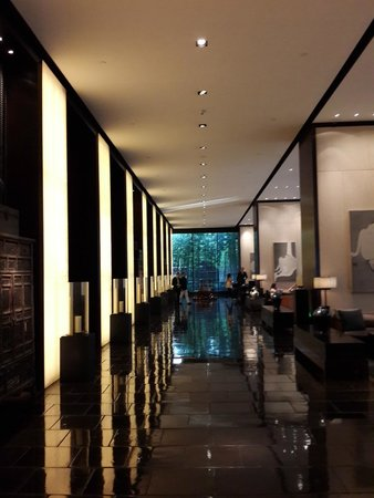 The PuLi Hotel and Spa: lobby & long bar