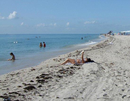 BEST WESTERN PLUS Windsor Inn: マイアミビーチへもそんなに遠くないです