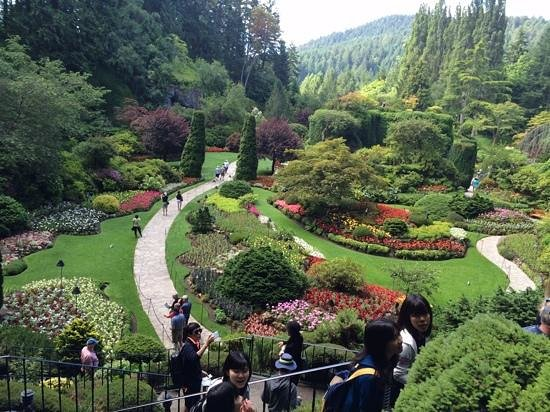 Butchart Gardens: topside view of the Sunken Garden