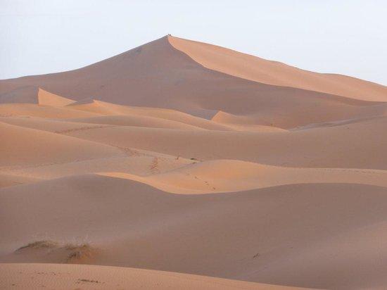 Medina Tours: le dune