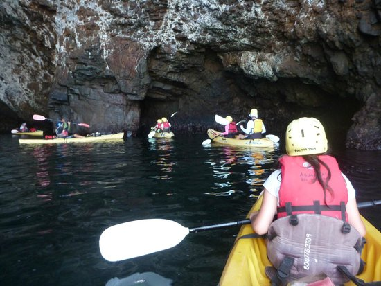 The Sea Caves