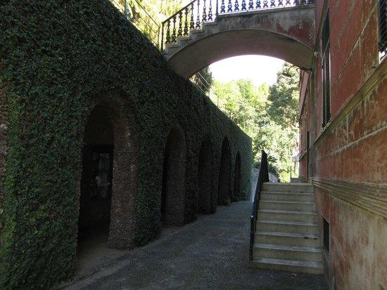 Monte Palace Madeira : Tropical Garden