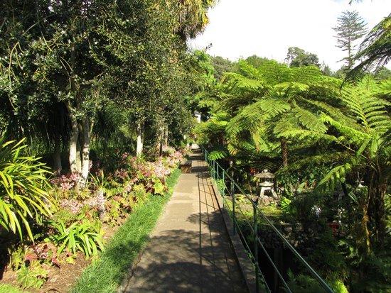 Monte Palace Tropical Garden: Tropical Garden