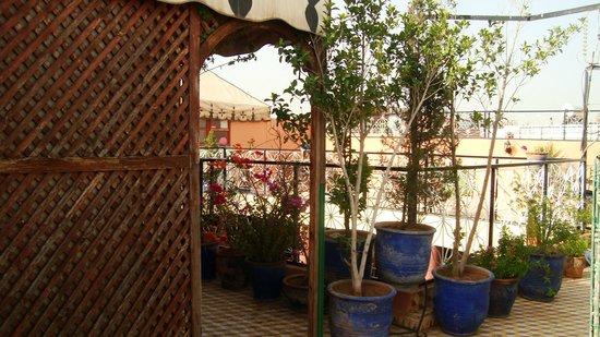 Hotel Imouzzer: Terrasse sur le toit