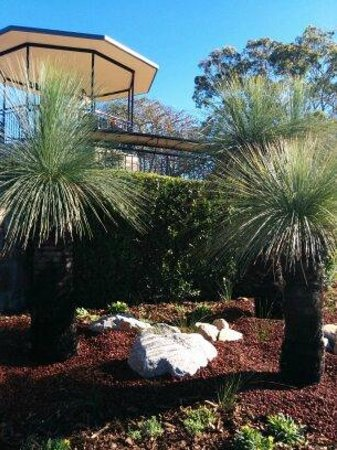 Mount Coot-tha Lookout: Nice gardens