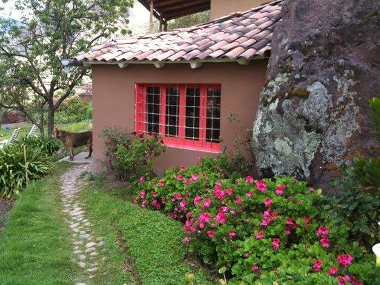 La Casa Del Conde : Beautiful gardens